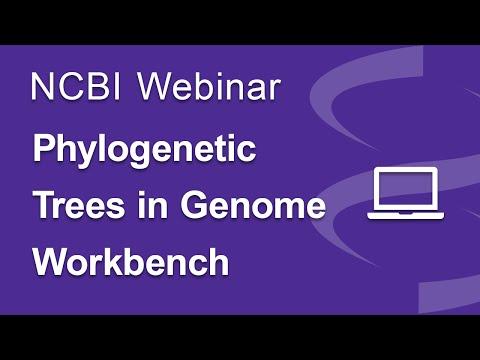 Webinar: Phylogenetic Trees in Genome Workbench