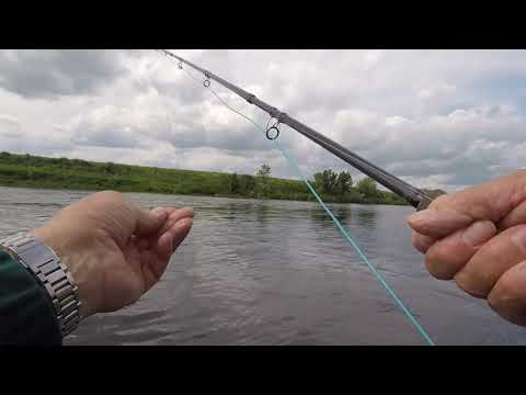 Salmon Fishing At Cornhill On The River Tweed