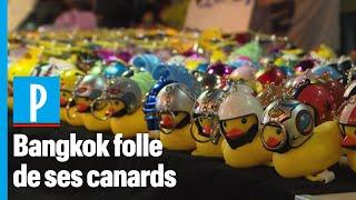 Thaïlande : le canard en plastique, de symbole pacifiste à best-seller