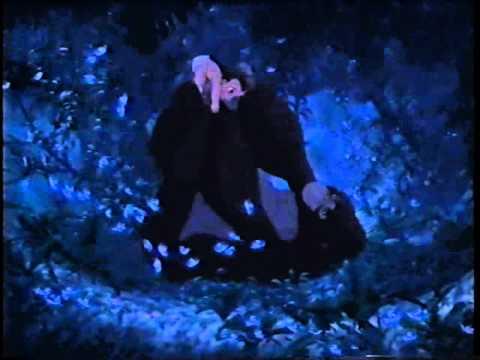 Tarzan - No meu coração você vai sempre estar