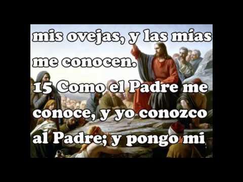 Evangelio de Juan 10
