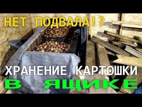 Как хранить картофель зимой если НЕТ ПОДВАЛА. Ящик для хранения картофеля СВОИМИ РУКАМИ