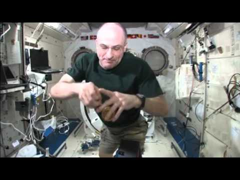Space Physics: The Science of YoYo's in Zero Gravity | NASA ISS Space Station Microgravity Video