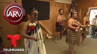 Al Rojo Vivo | Indígenas Maori de Nueva Zelanda muestran ritual de guerra | Telemundo ARV
