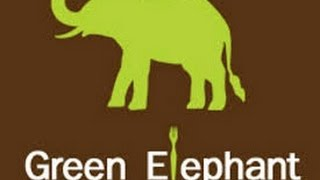 The Green Elephant movie review (UW+R)