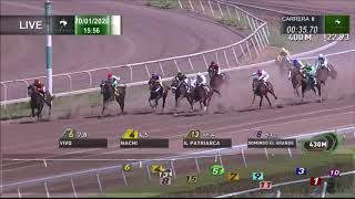 Vidéo de la course PMU PREMIO SOUL CAFE