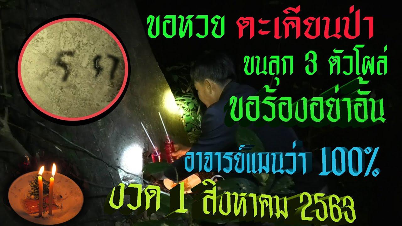 ตะเคียนป่า เฮี้ยนให้เลขมา 3 ตัว ขอชุดไทย 10 ตัว ขอร้องเจ้ามือห้ามอั้น งวด 1 สิงหาคม 2563