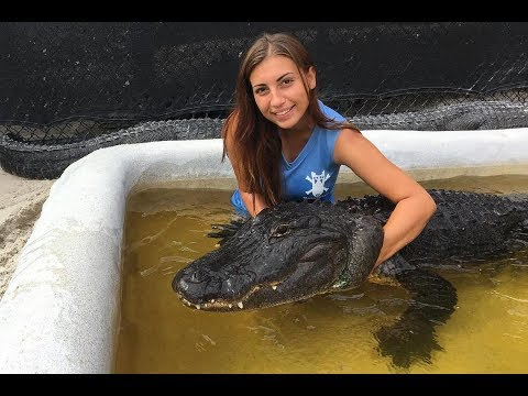 Gator Girl Rescues Nuisance Alligators | BEAST BUDDIES