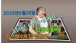 양푼이품바(4k영상)일산해수욕장첫날공연