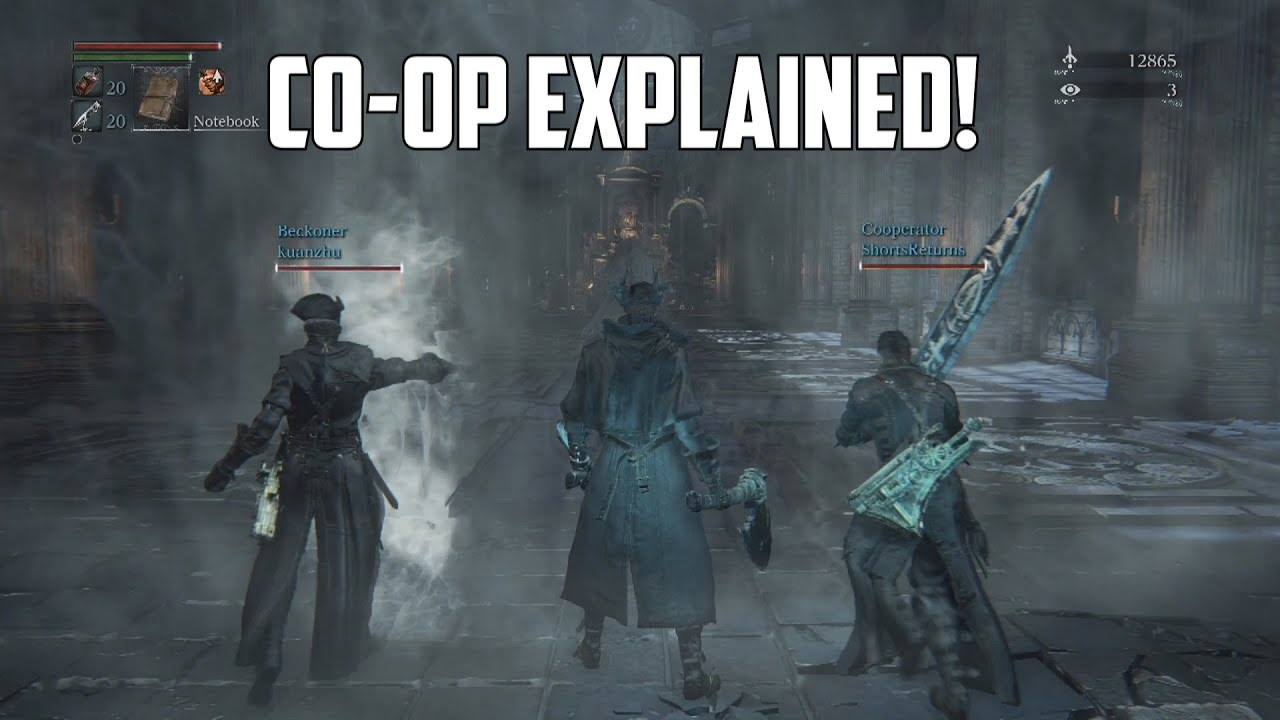 Bloodborne will offer competitive (PvP) and cooperative (co-op).