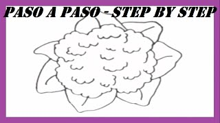 Como dibujar una Coliflor paso a paso l How to draw a Cauliflower step by step