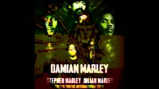 9  -  Damian Marley - War ~ No More Trouble   (Live in Glastonbury 2007)