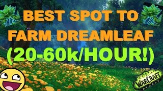 20k-60k PER HOUR : The Dreamleaf Paradise
