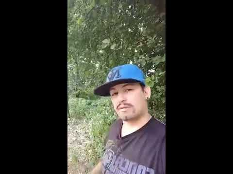 Totalnie pijany TIGER BONZO 2018 mówi o danielmagical i pato stream