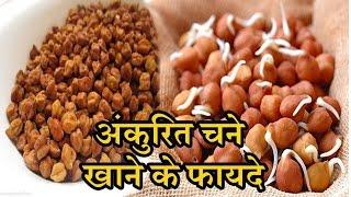 अंकुरित चने खाने के 10 चमत्कारी फायदे |Ankurit Chane Ke Fayde | Health Benefits Of Soaked Chana