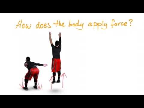 The Body in Motion - Force