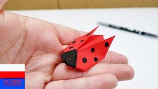 Biedronka z origami   bardzo szybkie i proste