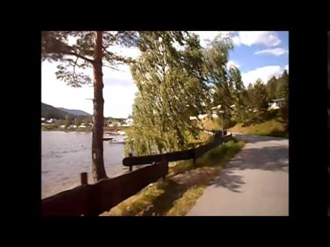 Aurdal Fjordcamping & Hytter AS