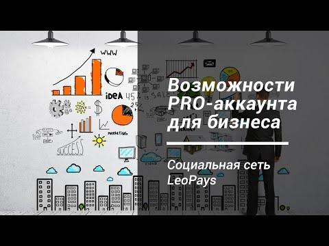 Статус ПРО для бизнеса - Соцсеть LeoPays