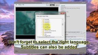 How to Convert DVDs to iPod: Cucusoft DVD to iPod Converter