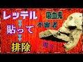 【 吸血鬼 】魔女狩り復活!?【 不審者 】