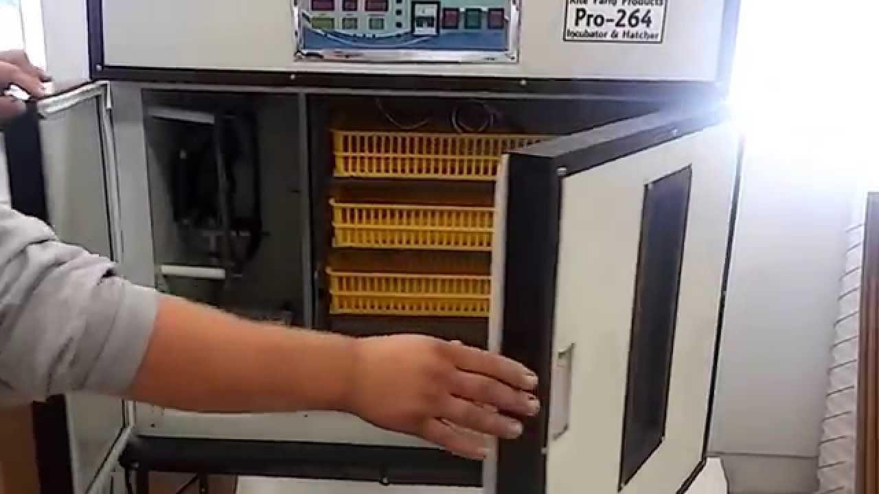 Cabinet Incubator Kit Rite Farm Products Pro Cabinet Incubator Startup Instructions