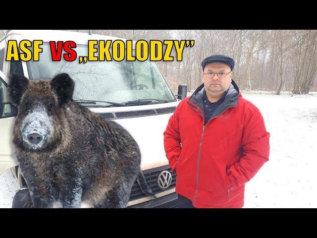 ASF vs ,,EKOLODZY,,  ☆ Koniec Polskiej Wieprzowiny.. ☆ Zjednoczenie AGROUNI