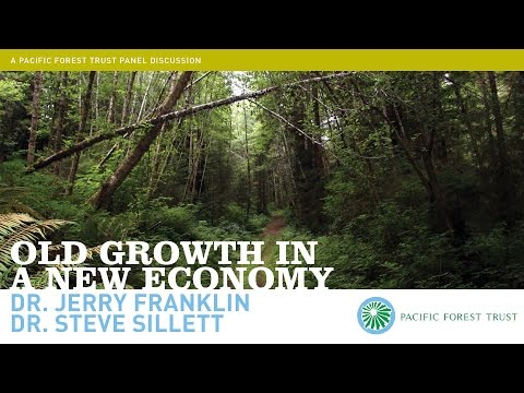 Old Growth in a New Economy