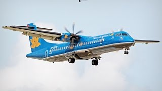 All Vietnam Airlines Aircraft model