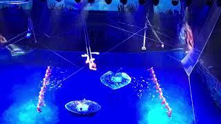 """Цирковое водное шоу """" Пираты подземного моря»"""