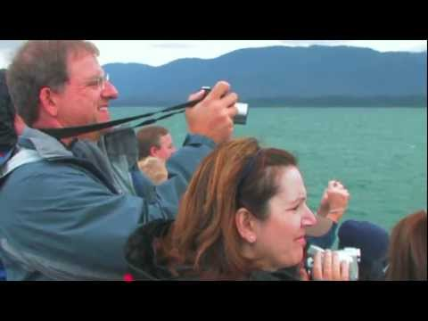Whale Watching Tours in Juneau, Alaska