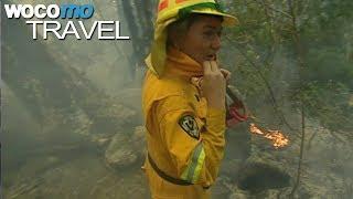 Tasmanien - Wächterin im Paradies (360° - GEO Reportage)