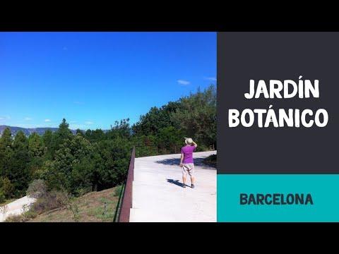 El jard n bot nico de barcelona the barcelona botanic garden for Jardin botanico montjuic