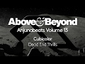 Cubicolor Dead End Thrills Anjunabeats Volume 13 Preview mp3