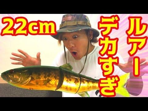 22cm�超巨大ルアー�魚�釣れる�?