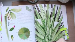 Botanical Painting In Watercolour by Billy Showell | Book Review