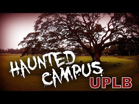 The Scariest Places in UP Los Baños (UPLB)