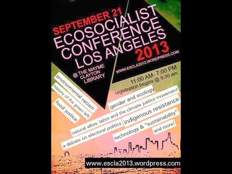 ECOSOC2013 - Natural Allies: Labor and Climate Justice