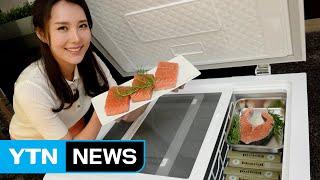 LG전자, 가정용 초저온 냉동고 첫 출시 / YTN (…