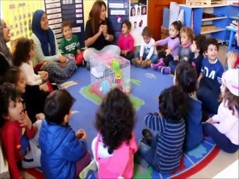 Zoology Study- Trillium the Montessori House