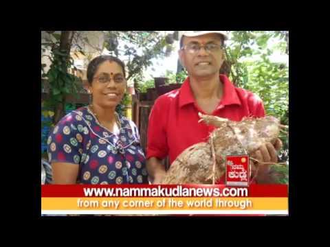 MANGALOORU PADDAMBAIL KRISHNAPPA GOWDAS TERRACE AGRICULTURE