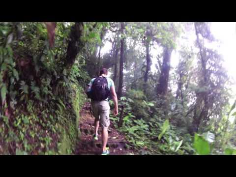 Costa Rica Monteverde Cloud Forest Hike Sendero Wilford Guidon Part 2 at LeaningTraveler.com