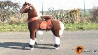 Présentation du PonyCycle - Kangour'HOP