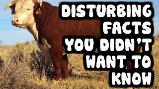 10 DISTURBING Facts You Didn