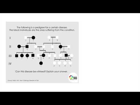 Pedigree Diagram #1, HSC Biology (Blueprint of Life)