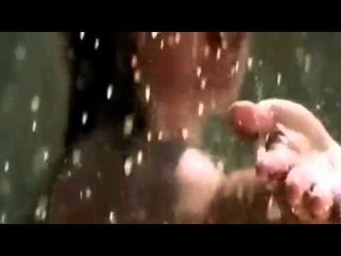 (...Vidya & Vandana Iyer♫ Hum Hain Is Pal Yahan)