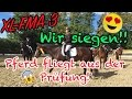 XL-FMA I Franjo goes Gold & Pferd fliegt aus der Prüfung :O I + Verlosung I Doppelturniertag 3