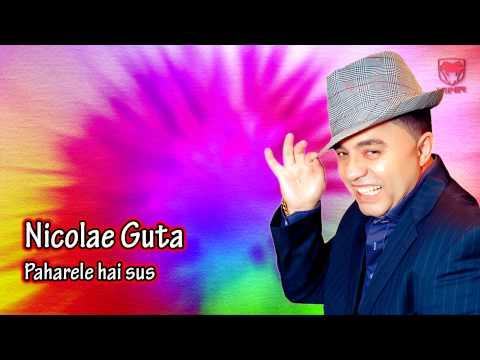 Nicolae Guta - Paharele hai sus