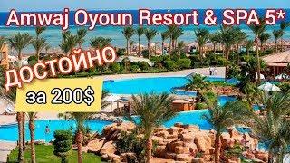 Amwaj Oyoun Resort SPA 5 Полный обзор отеля Шарм эль Шейх Египет Мечта путешественника