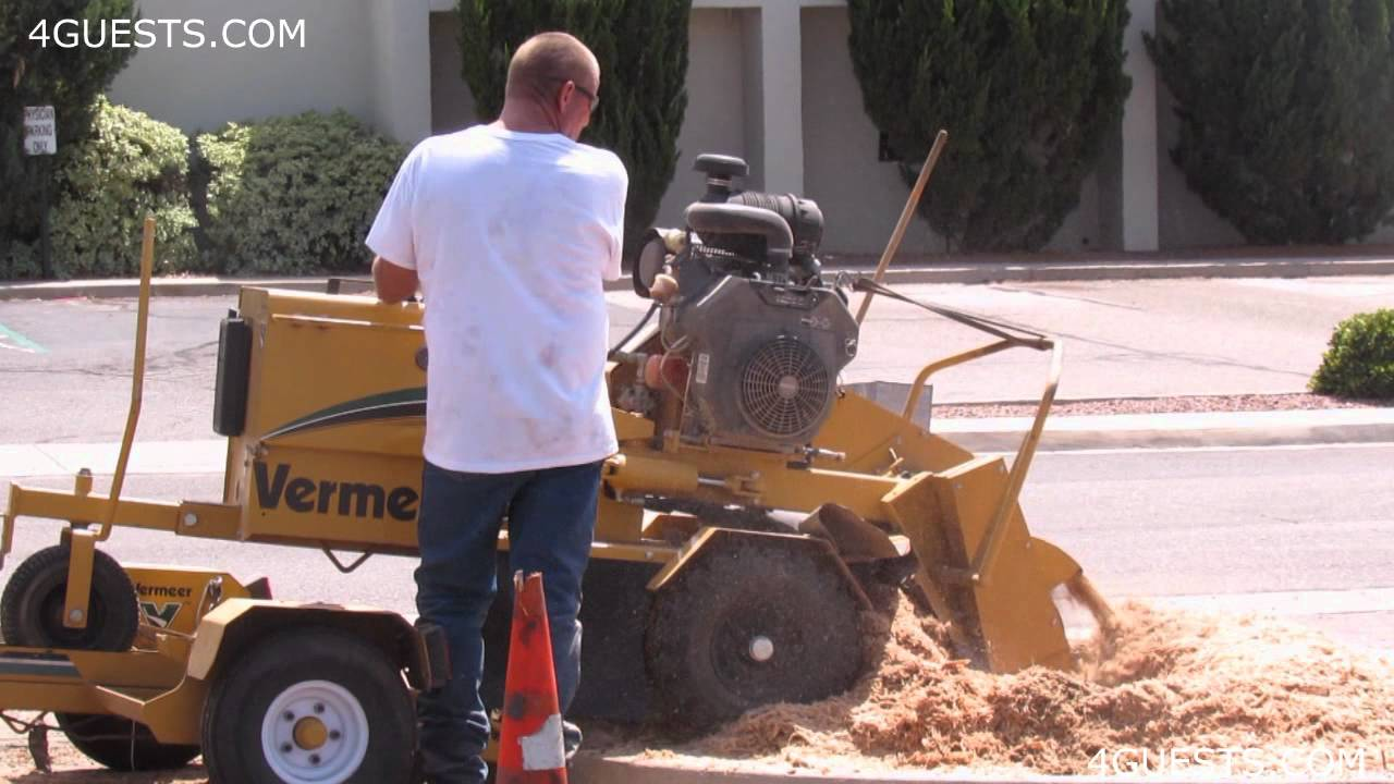 Vermeer Stump Grinder >> VERMEER STUMP GRINDER SC252 in ACTION - YouTube